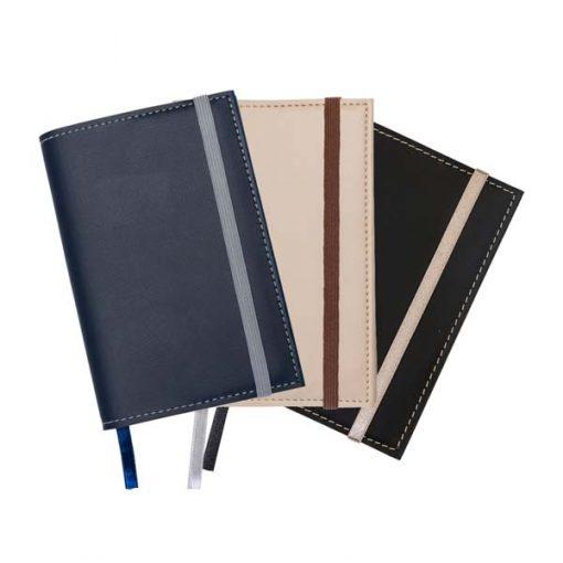 Caderneta Bidins 1